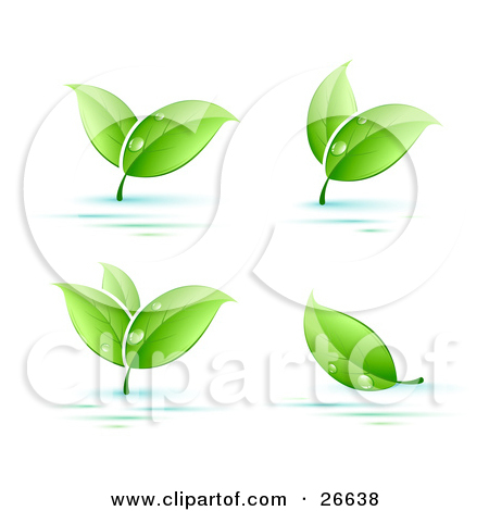 Clipart Illustration of a Curvy Green Vine With Dew Drops On The.