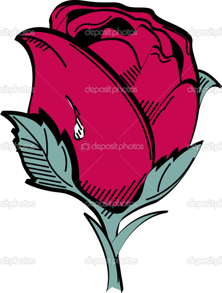Dew Drop On The Side Of A Single Red Rose — Stock Vector.