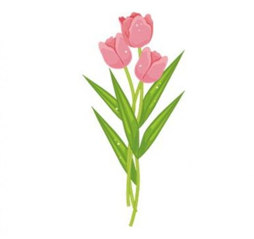 FLOWER CLIP ART: Collection of 150.