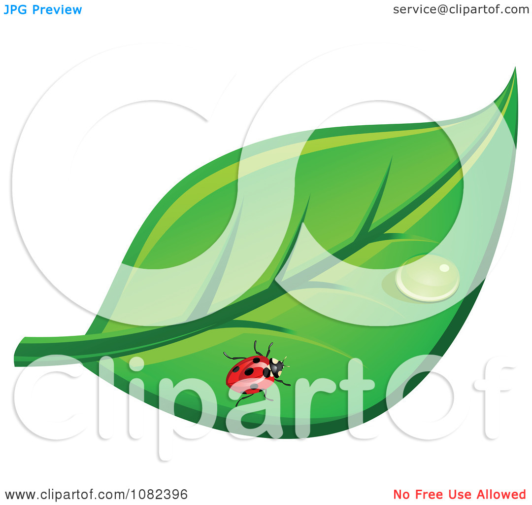 Clipart Ladybug On A Leaf With A Dew Drop.