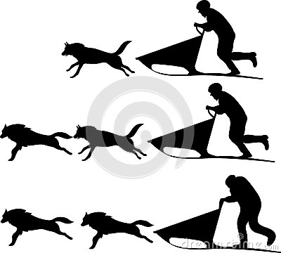 Musher And Dogs Mix N Match Stock Images.
