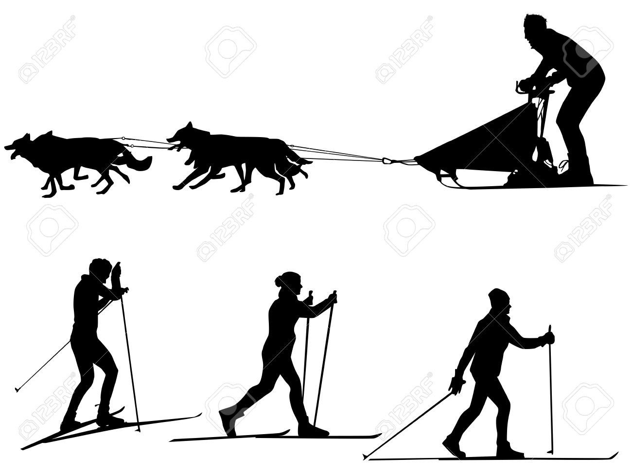 Cross Country Skiing And Dog Sledding Sport Silhouette Team Of.