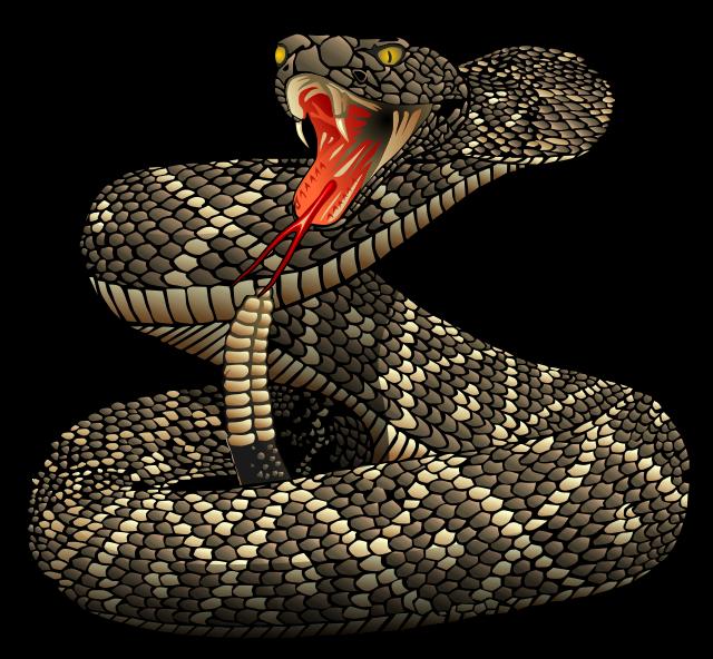 Rattlesnake clip art.