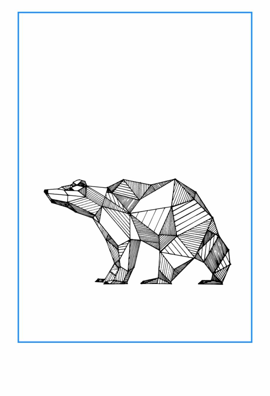 Drawing Geometric Animal.