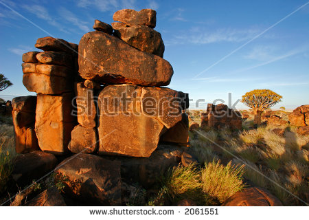 Desert Landscape At Sunrise With Granite Rocks And A Quiver Tree.