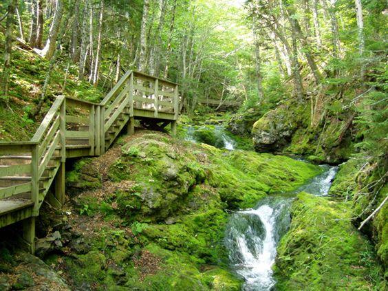 Dickson Falls, Fundy National Park, New Brunswick, Canada photo.