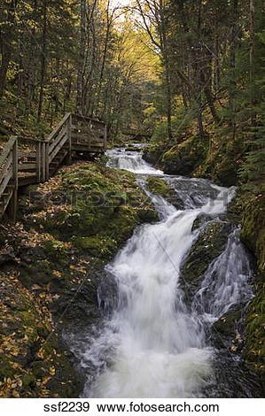 Stock Photograph of Beautiful Dickson Falls frlows through autumn.