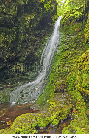 Dickson falls Stock Photos, Images, & Pictures.