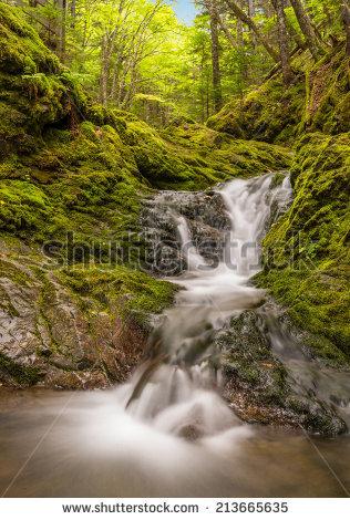 "fundy_national_park"" Stock Photos, Royalty."