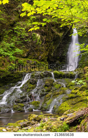 Fundy National Park Stock fényképek, jogdíjmentes képek és.