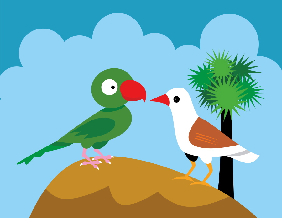 Images Of Cartoon Birds.