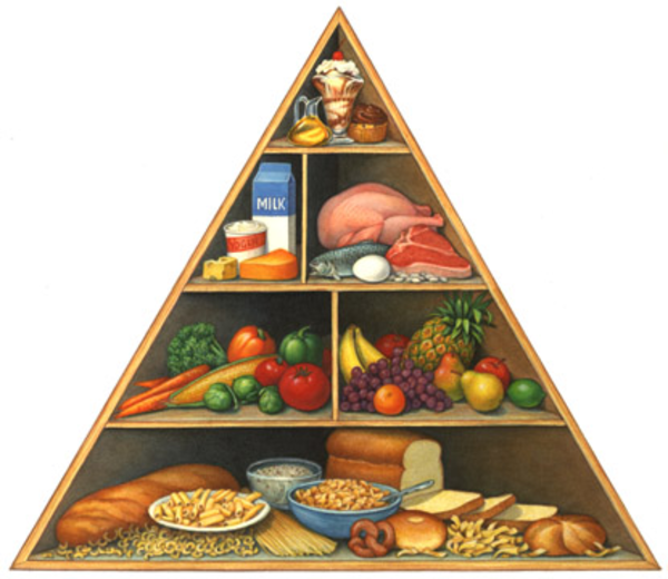 Free clipart images for elementary science food and nutrition.