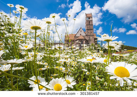 Black Forest Germany Stock Photos, Royalty.