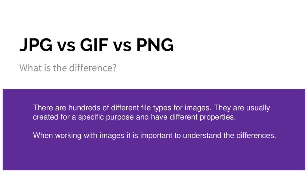 JPG vs GIF vs PNG What is the difference?.