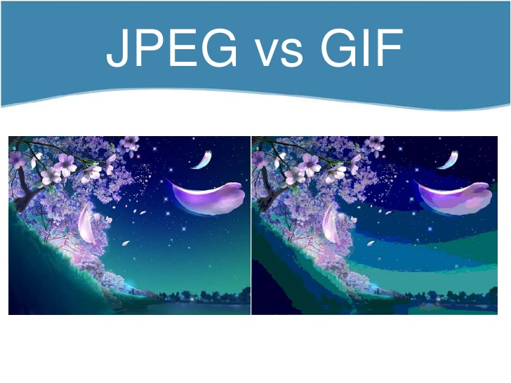10 Common Image File Formats and Their Differences.