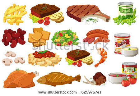 Different Kind Meat Food Illustration Stock Vector 310254194.