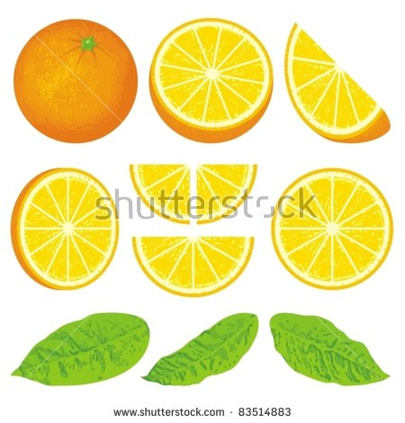 Orange And Slices At Different Angles, Also Three Versions Of.