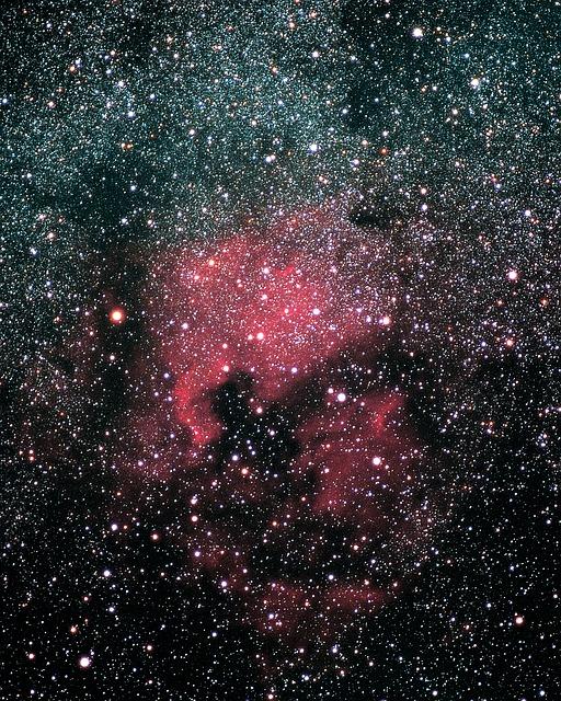 Free photo: North America Nebula, Ngc 7000.