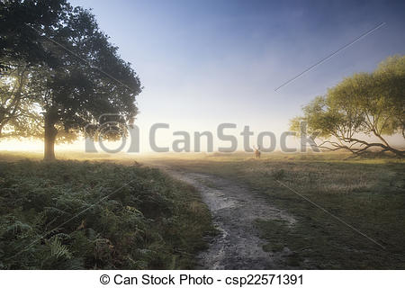 Stock Photographs of Beautiful diffused light on landscape with.