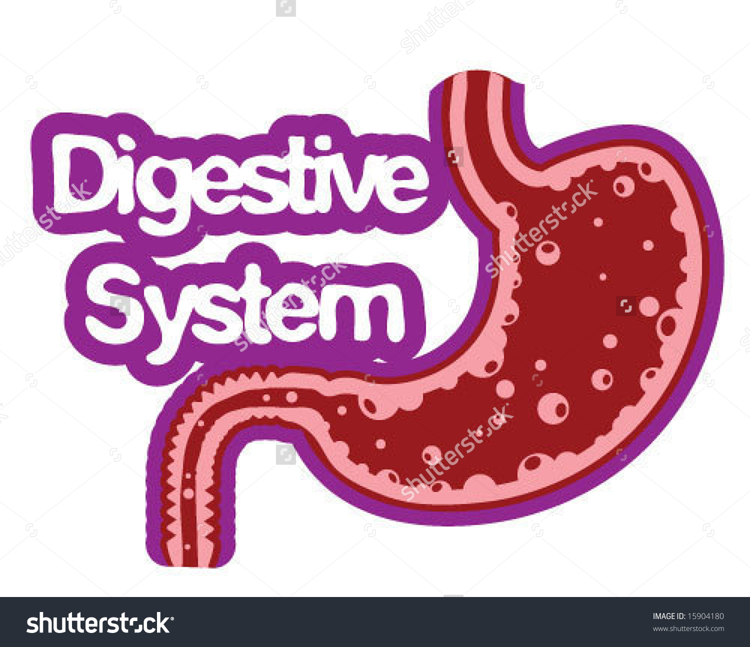 Digestive System Icon Stock Vector 15904180.