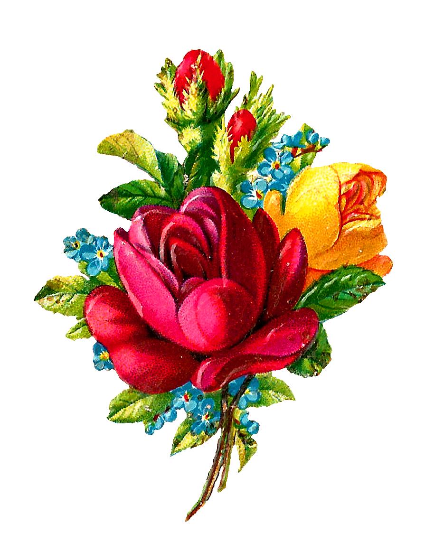 Antique Images: Digital Red Rose Clip Art Flower Download.