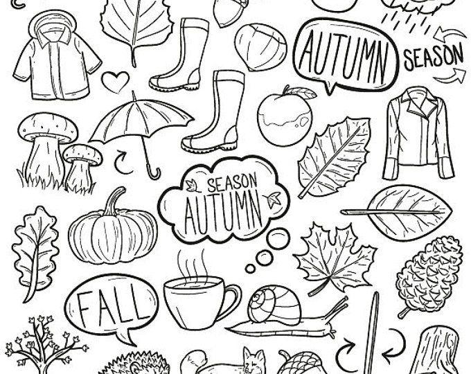 Hand Drawn Cute Autumn Clipart Illustration set, Digital.