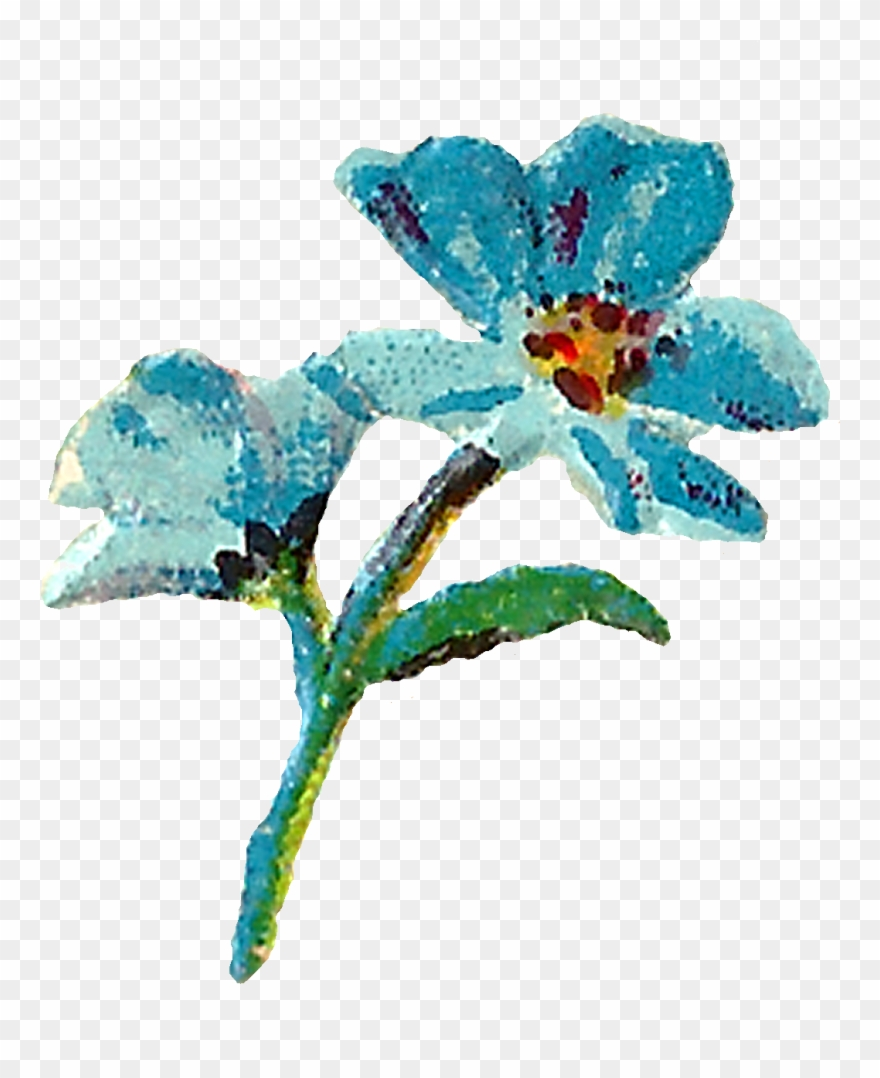 Pastel Floral Clipart Digital Flowers Pink Blue Image.