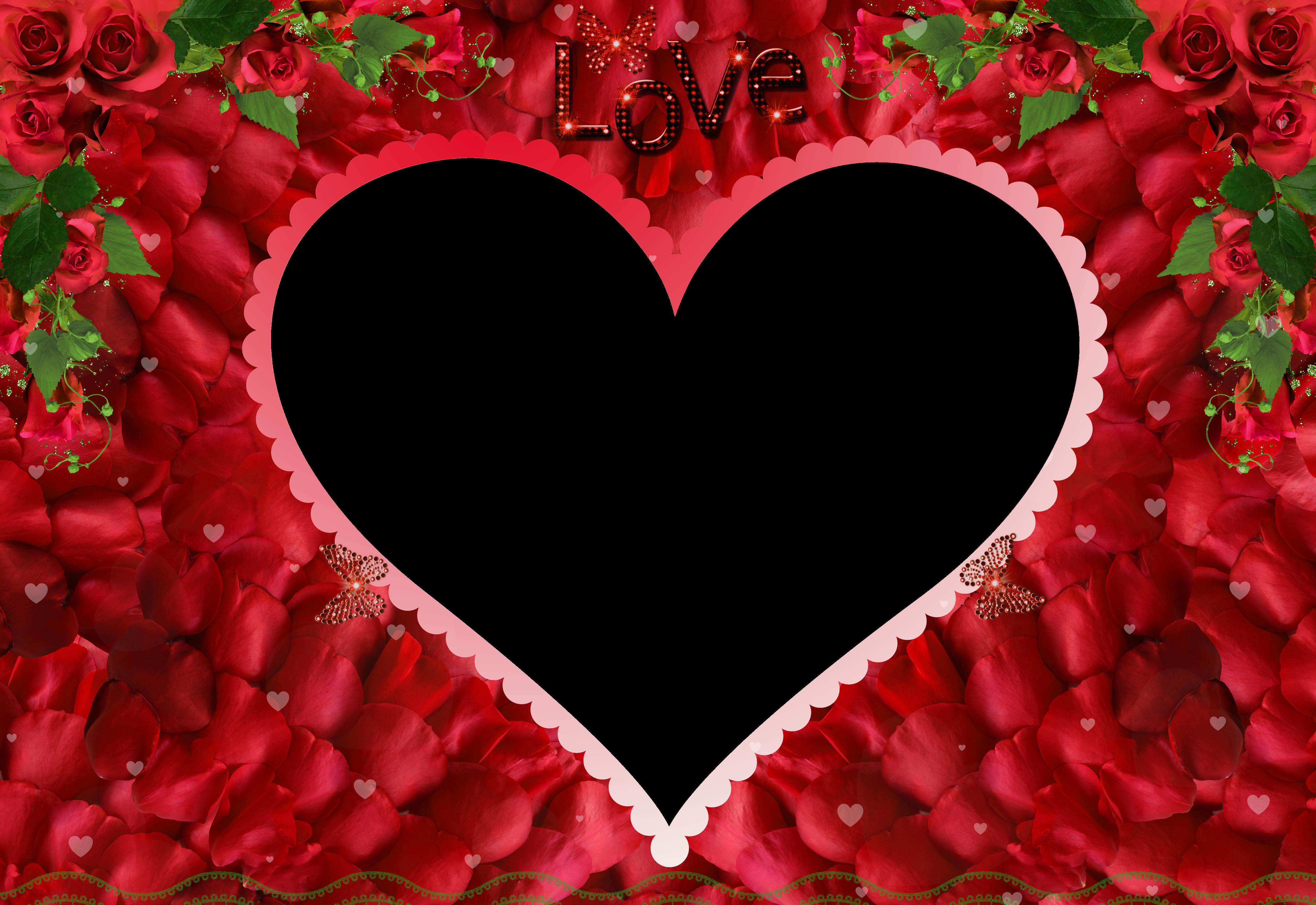 Love Rose Red Transparent PNG Photo Frame.