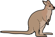 Wallaby Clip Art.
