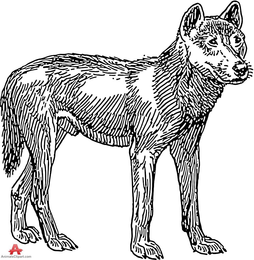 Dingo Dog Stencil Clipart.