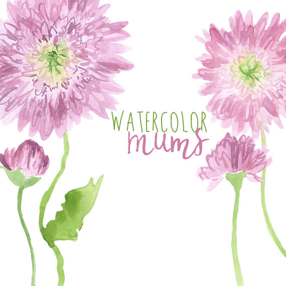 Watercolor Chrysanthemum Flower Clipart by DigitalPressCreation.