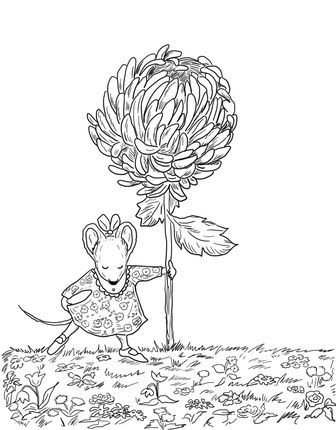 Chrysanthemum coloring page.