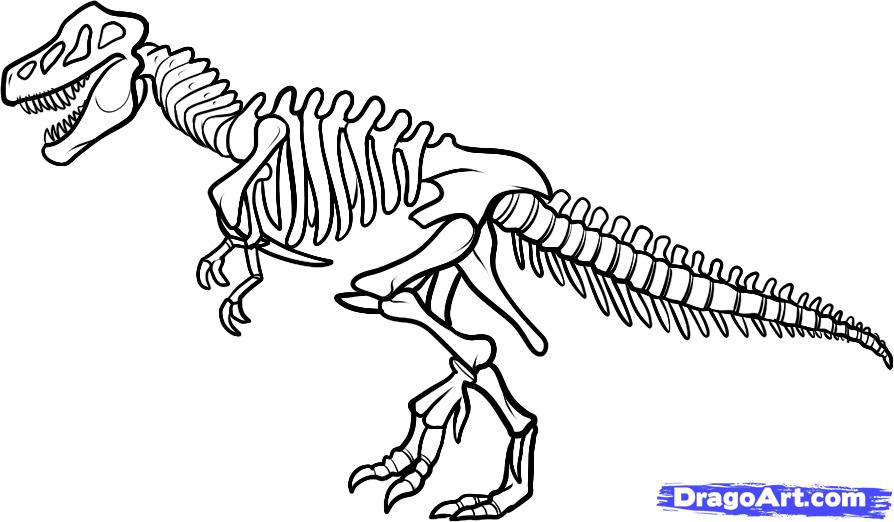 Free Dinosaur Skeleton Cliparts, Download Free Clip Art.