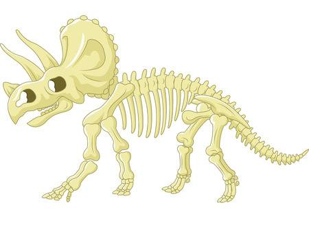 4,248 Dinosaur Fossil Stock Illustrations, Cliparts And Royalty Free.