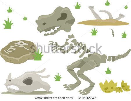 Dinosaur Bones Stockbilder und Bilder und Vektorgrafiken ohne.