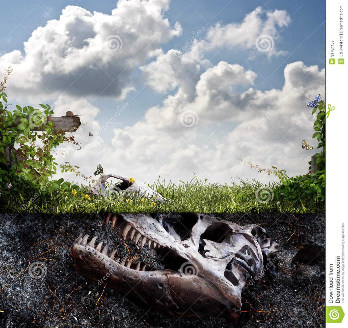 Dinosaur Fossil Buried In Dirt Royalty Free Stock Photography.