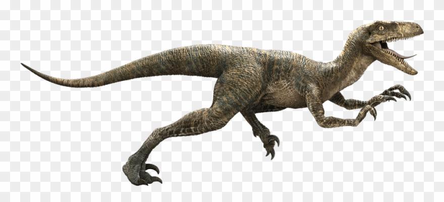 Raptor Dinosaur Png.