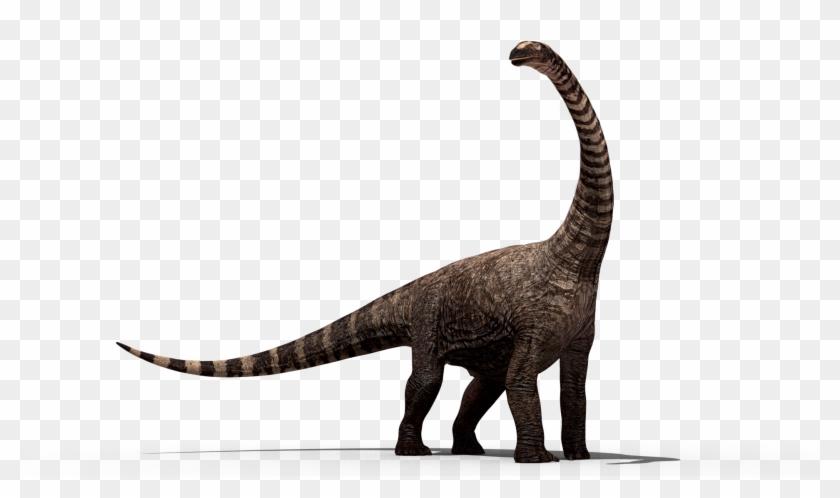Dinosaur Png.