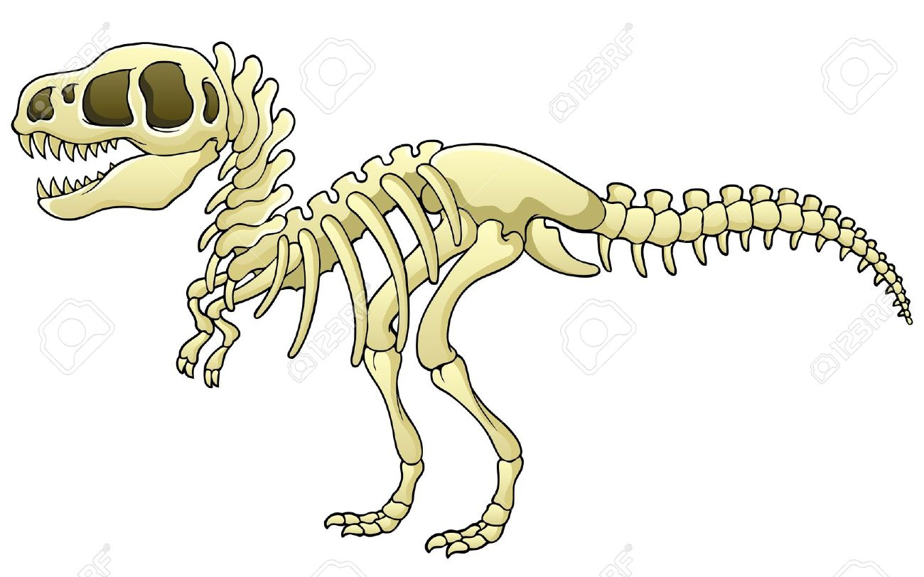 Dinosaur Skeleton Clipart