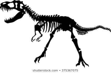 Download Free png Dinosaur Skeleton Images, Stock Photos & Vectors.
