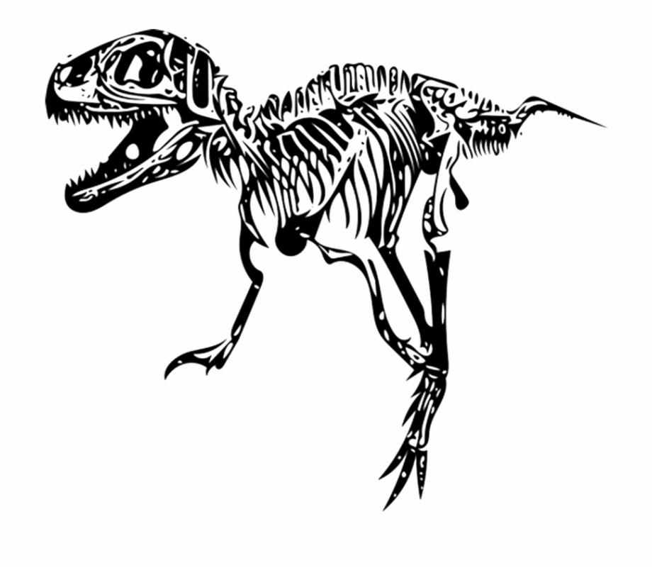 Tyrannosaurus T.