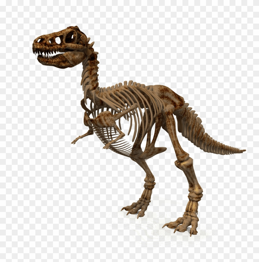 Free Png Download Dinosaur Png Images Background Png.