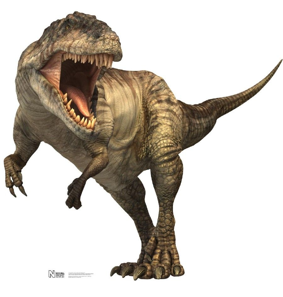 Resultado de imagen para giganotosaurus.