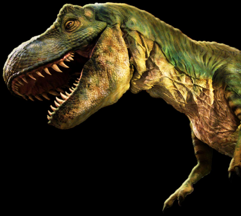 Download Dinosaur Png.