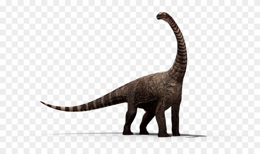 Dinosaur Png Images.