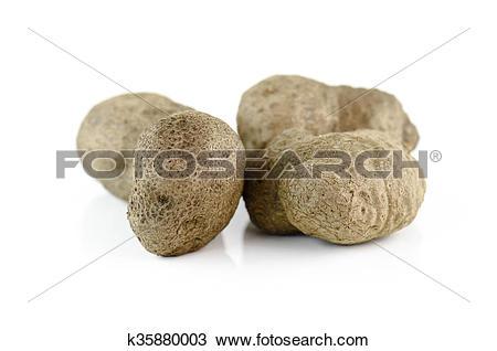 Stock Photo of Air potato, dioscorea isolated on white background.