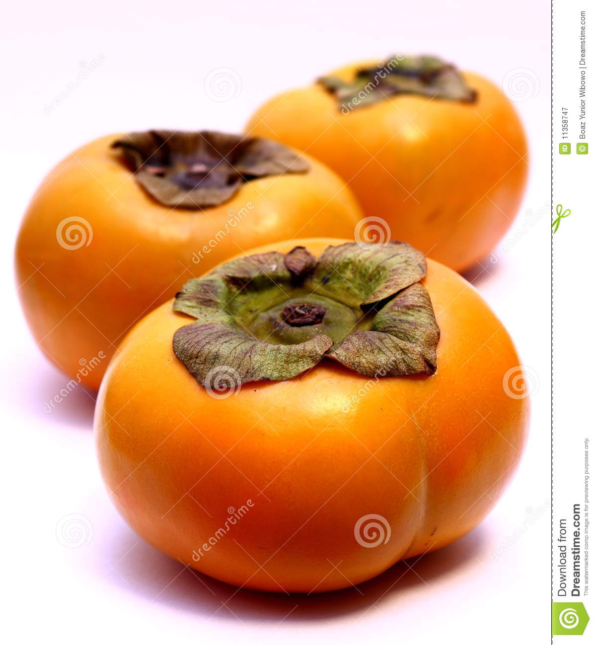 Tree Persimmon Fruits (Diospyros Kaki) Royalty Free Stock.