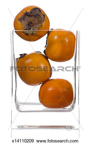 Stock Photograph of Persimmon (Diospyros kaki) x14110209.