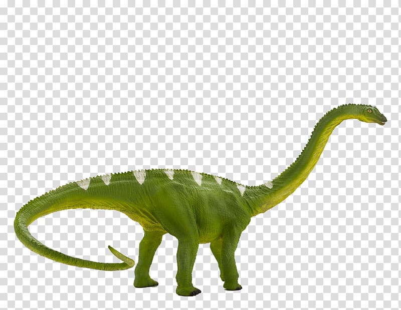 Diplodocus Baryonyx Tyrannosaurus Suchomimus Apatosaurus.