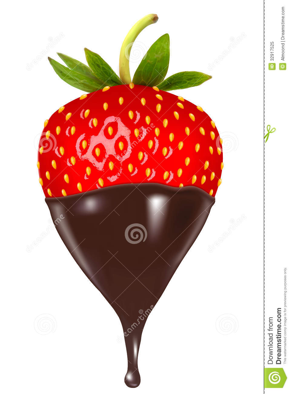 Chocolate Dipped Strawberry. Royalty Free Stock Photo.